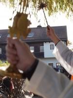 http://www.leonhardiritt-preisendorf.de/files/gimgs/th-21_PB040125.jpg