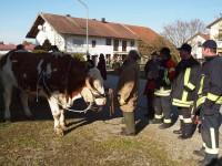 http://www.leonhardiritt-preisendorf.de/files/gimgs/th-26_PB094912.jpg