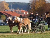 http://www.leonhardiritt-preisendorf.de/files/gimgs/th-26_PB095076.jpg