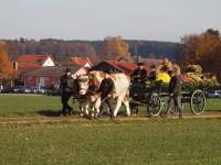 http://www.leonhardiritt-preisendorf.de/files/gimgs/th-26_PB095087.jpg
