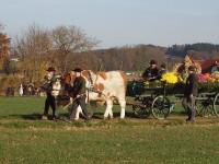 http://www.leonhardiritt-preisendorf.de/files/gimgs/th-26_PB095090.jpg