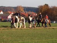 http://www.leonhardiritt-preisendorf.de/files/gimgs/th-26_PB095119.jpg