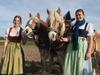http://www.leonhardiritt-preisendorf.de/files/gimgs/th-29_PB080503_v2.jpg
