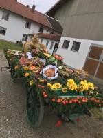 http://www.leonhardiritt-preisendorf.de/files/gimgs/th-34_PHOTO-2018-11-04-16-33-17-5.jpg
