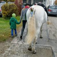 http://www.leonhardiritt-preisendorf.de/files/gimgs/th-34_PHOTO-2018-11-05-09-14-38.jpg